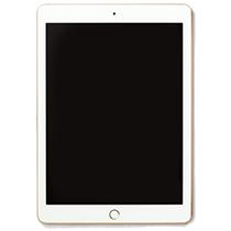 iPad本体